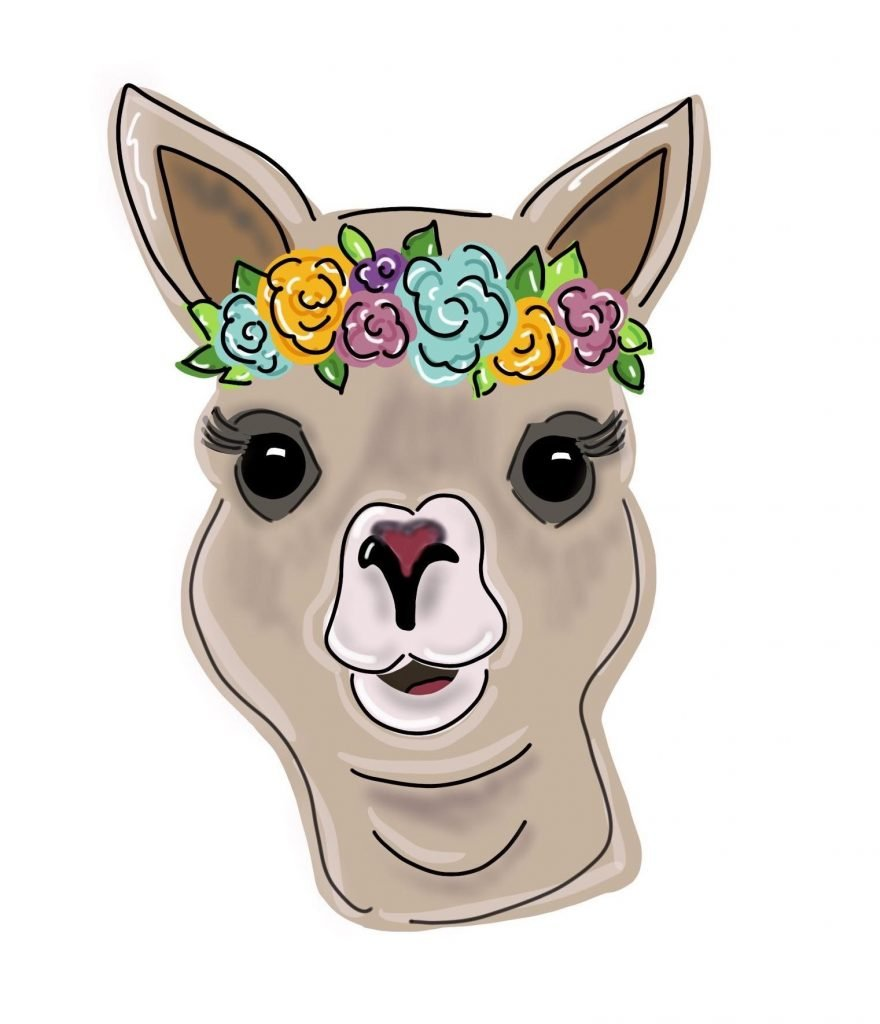 Floral Llama Painted Door Hanger of Flower Farm Animals by Southern ADOORnments
